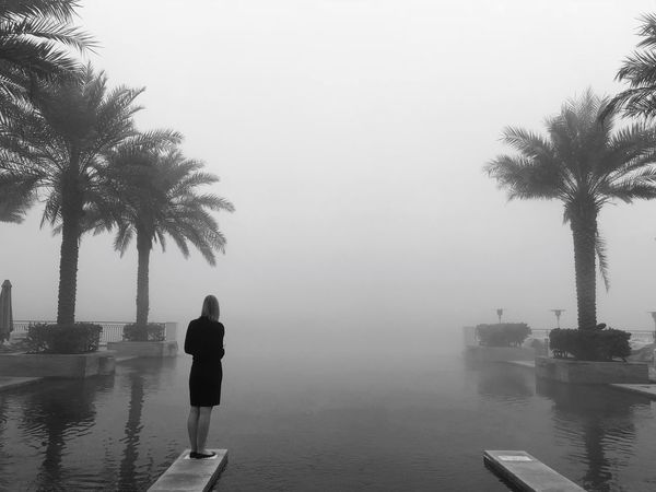 Palm Tree Tree Water Rear View Nature Real People Standing Outdoors Beauty In Nature One Person Lifestyles Fog Women Scenics