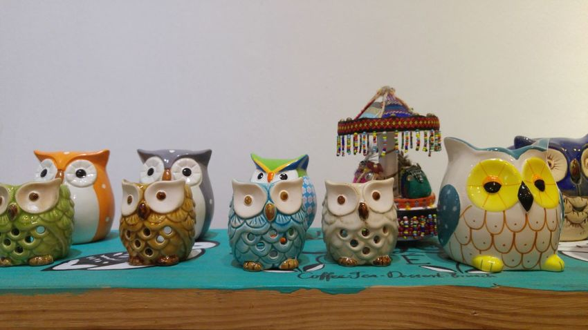 Decoration Decor Porcelain  Porcelain Ornaments Owl Owls In A Line Colorful Colour Of Life