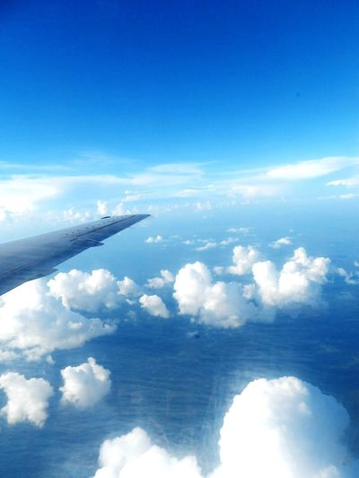 EyeEmNewHere Window Seat Airplane Wing Airplane Planet Earth Flying Blue Sea City Sky Cloud - Sky