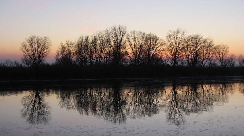 Bare Tree Beauty In Nature Day Nature No People Outdoors Reflection Scenics Silhouette Sky Sunset Tranquil Scene Tranquility Tree Water