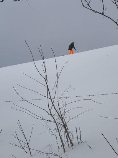 Schlittenfahrer Wintersport Sauerland Schlittenfahren Orange Ski Pants Not Black & White Fasg Ein SW Foto Orange Und Schwarz Und Weiss Winterlandschaft Snow Covered Sleighride Outdoors