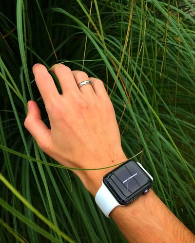 Nature. Nature Apple Applewatchband EyeEm Selects Plant Green Color High Angle View Growth Technology Wireless Technology Connection Nature