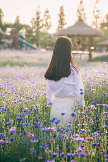 Beauty In Nature Cornflower Flower Leisure Activity Lifestyles Long Hair One Person Outdoors Purple Standing Women