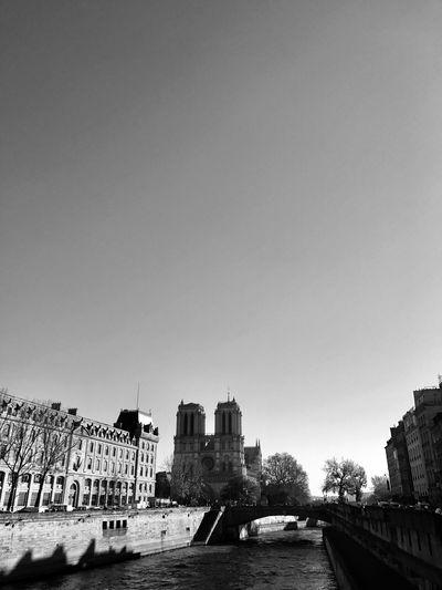 EyeEmPhoto EyeEm Best Shots - Black + White EyeEm Selects EyeEmNewHere Beautyfull Monument Incontournable Cathedrale Ville Lumières Stylerspicture Ile De France Paris Et Magic La Seine Cite Of Light Parisiens Economie Capital Paris Cœur De Paris Architecture Saint Michel Notre Dame Cathedral