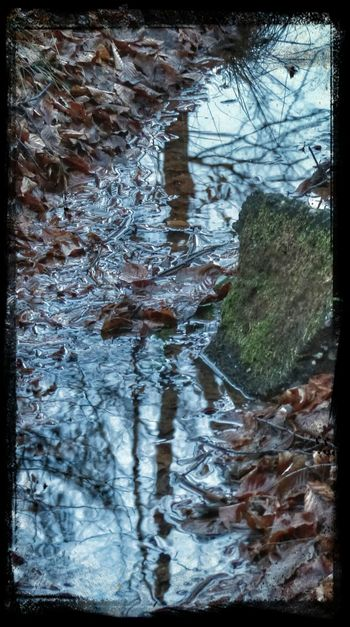 Water Reflections / Life is a river, wild and full of power and then suddenly calm as a Creek