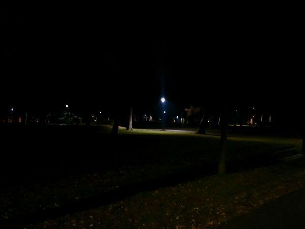 Night Illuminated Sky Dark Outdoors Tree No People Nature Midnight