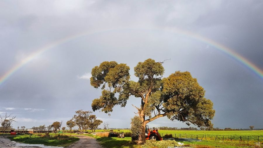 Farm Rainbow RainbowBeen There. Tree Nature Beauty In Nature Outdoors Cloud - Sky Storm Cloud Idyllic Double Rainbow Scenics Landscape Environment Sky Ominous Day No People Tranquility Mountain Grass The Week On EyeEm