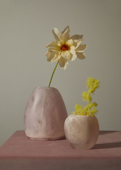 Close-up of white flower pot on table