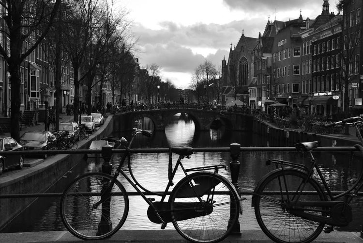 In B&W Blackandwhite Cityscape City Street Amsterdam Canal Amsterdamcity Eye4photography  EyeEm Gallery b&w street photography Wintertime Winter Reflection Romantic Bicycle From Where I Stand EyeEm Architecture Urbanphotography Travel Destinations City Politics And Government Water Tree Bicycle Land Vehicle Reflection Bridge - Man Made Structure Sky Architecture Canal Townhouse