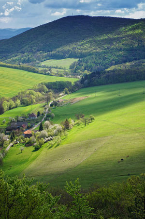 Spring landscape in Prasnik, Slovakia. Agriculture Beauty In Nature Day Field Forest Grass Green Color House Kopanice Landscape Living Mountain Nature Outdoors Prasnik Prasnik, Slovakia Road Rural Scene Scenics Sky Slovakia Tree Vertical Water Wood - Material