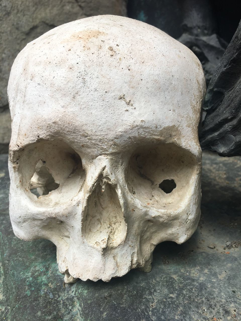 CLOSE-UP OF HUMAN SKULL ON OLD CROPPED HAND