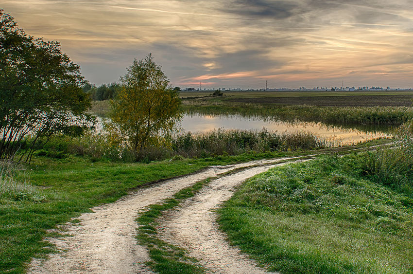 Path Beauty In Nature Cloud Cloud - Sky Cloudy Dirt Road Field Grass Growth Landscape Nature Road Rural Scene Scenics Sky Sunset The Way Forward Tranquil Scene Tranquility Tree Water