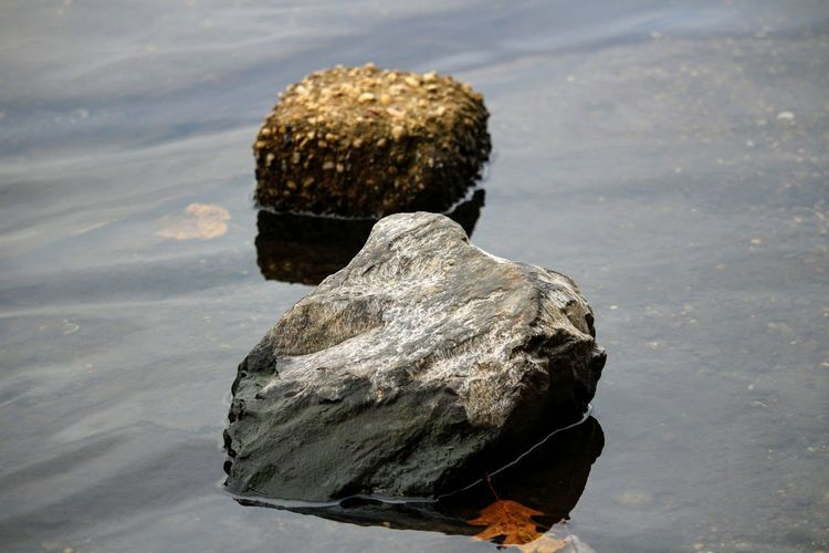 Close-up of rock in water