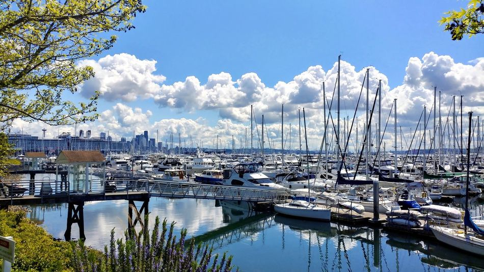 Marina by Elliot bay Marina Elliott Bay Boats Seattle, Washington Sky And Clouds Day No People Lgv20 LG V20 Phone Photography Summer Exploratorium Summer Exploratorium Adventures In The City