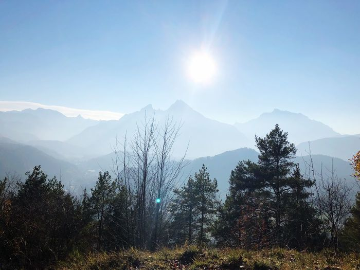 Mountain Beauty In Nature Scenics - Nature Plant Sky Tree Tranquil Scene Mountain Range Tranquility No People Non-urban Scene Landscape Idyllic Growth Nature Environment Snowcapped Mountain Sun Day Sunlight