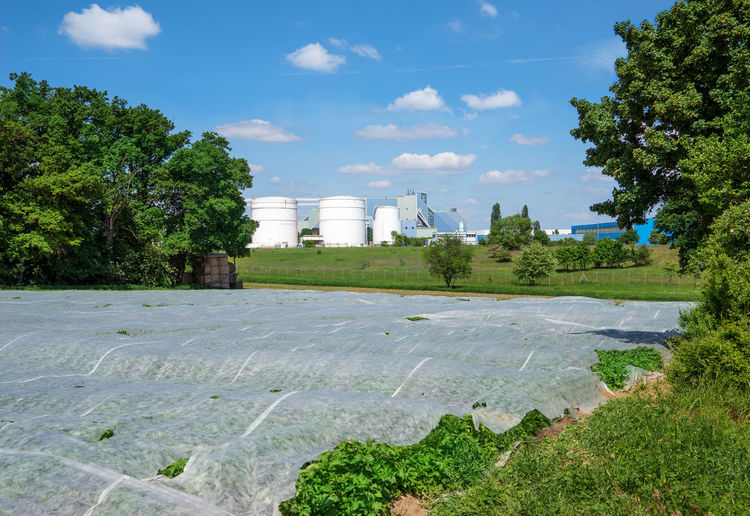 Field covered with nonwoven in front of an industrial plant Agriculture Field Growth Improvement Industry Plant Tree Agricultural Cover Covered Cultivation Environment Fabric Farming Fleece Foil  Grow Industrial Plant Material Optimization Optimize Outdoor Protect Protection Spring