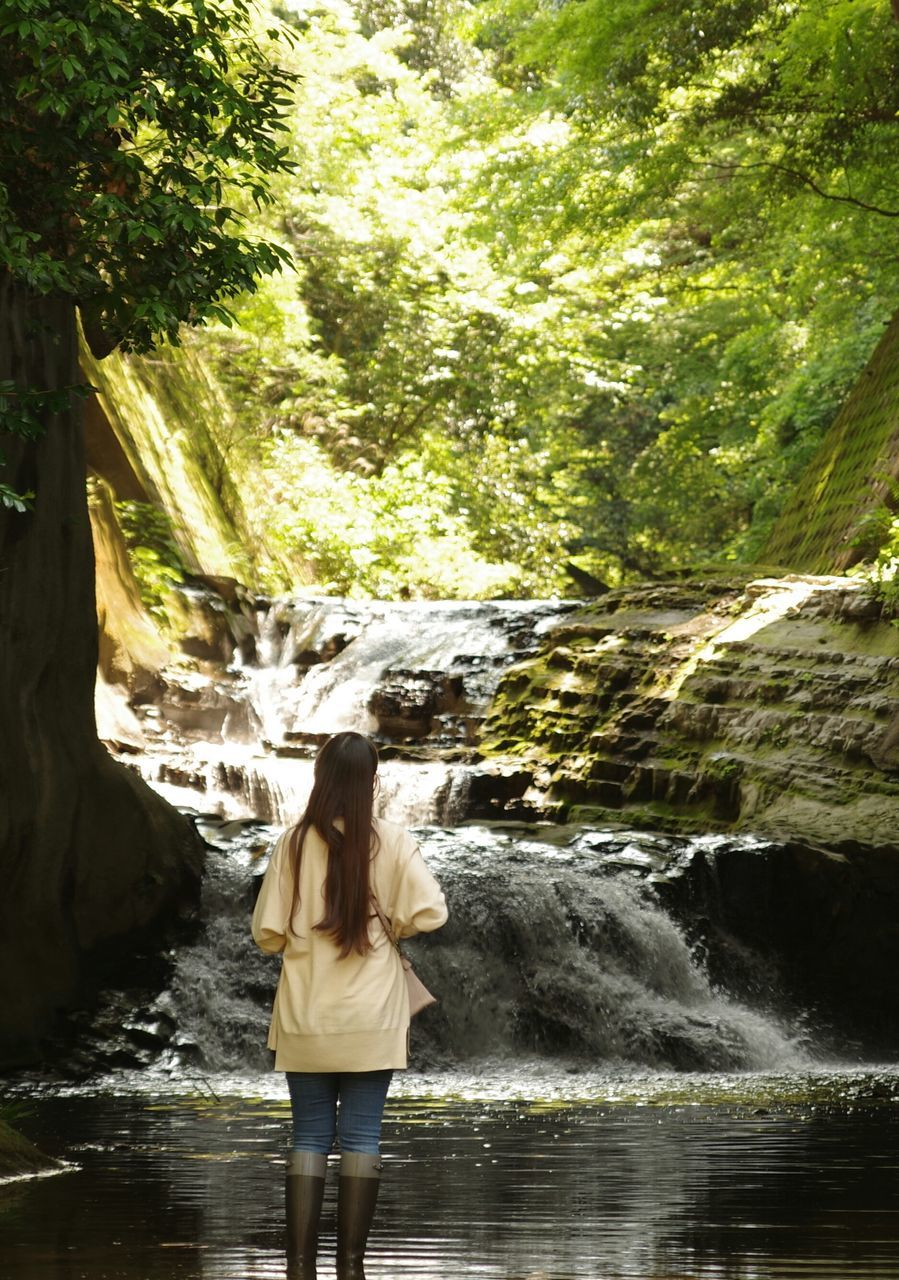 Rear View Of Woman Standing By River In Forest