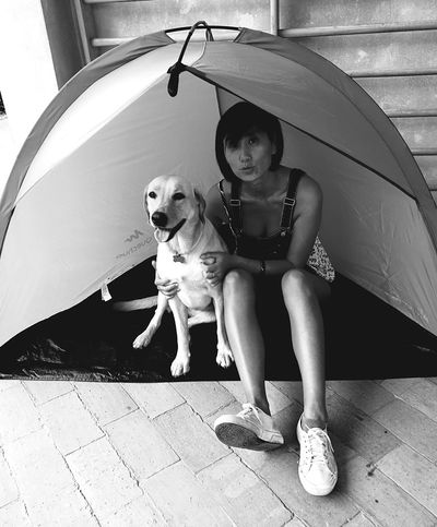 EyeEm Selects Dog Pets One Animal Adult People Friendship Portrait Outdoors Summer Looking At Camera Lifestyles Happiness Domestic Animals Sitting Puppy Women Day Full Length One Person Retriever