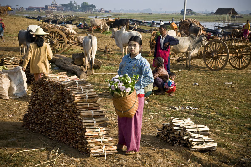 Adult Agriculture Burma Check This Out Cow Day Domestic Animals Farm Farmer Full Length Inle Inle Lake Livestock Mammal Market Market Stall Men Myanmar Nature Occupation Outdoors People Real People Standing Working
