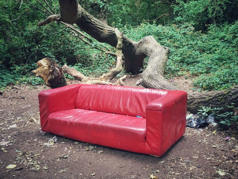 Park Livingroom Leather Couch Red Sofa Sofa Outdoor Living Room Outside Nature On Your Doorstep Seating