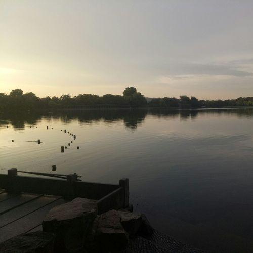 🔕Water Lake Reflection Sunset Outdoors Tree Travel Destinations Sky No People Landscape Nature Bird Day XiHu Xihu Lake Sudi
