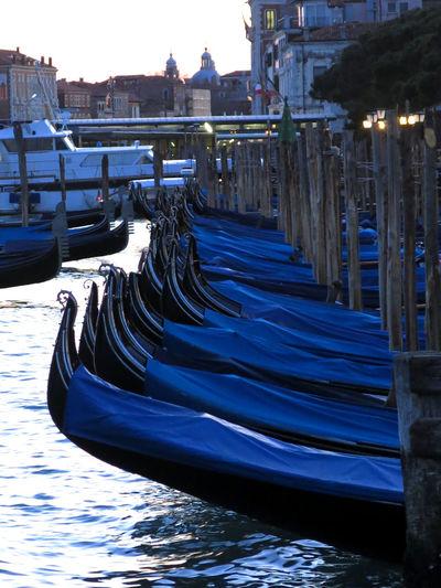 Venice Venice,