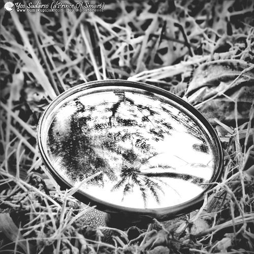 Feel Up and Down.. Eyemnaturelover Eye4photography  Blackandwhite Eye4reflections for full volor visit my IG: @yosforever