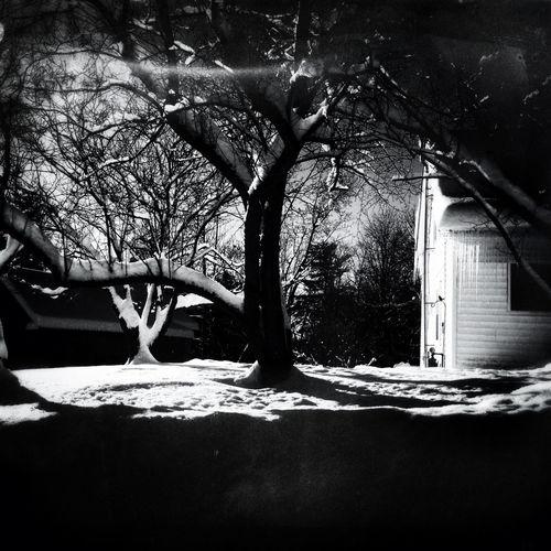 Blackandwhite Snow Winter