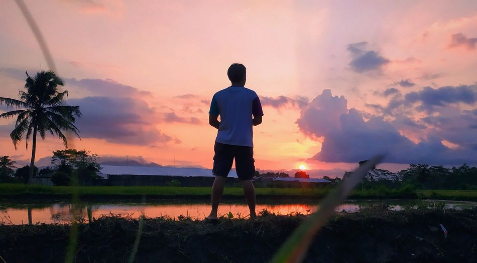 Rear view of silhouette man standing on field against sky during sunset