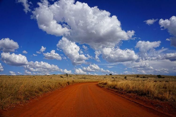 Road Amidst Agricultural Field Against Blue Sky