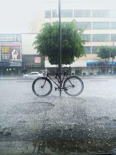 Heavy Rain Rain Heavy Rain Fixed Gear Bicycle Avenue Cdmx Df Hail