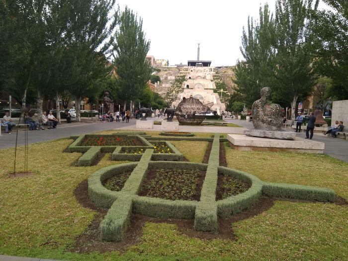 Tree City Park