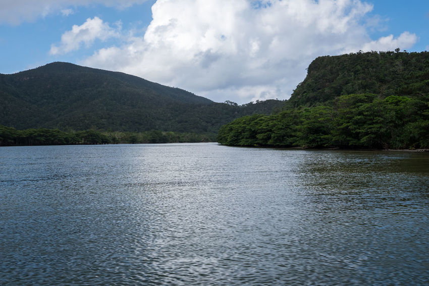 Beauty In Nature Countryside Distant Exploring Horizontal Symmetry Iriomote Japan Lake Mangroves Mountain Mountain Range Nature Non-urban Scene Outdoors River Scenics Tranquil Scene Tranquility Tree Vacation Voyage Water Landscapes With WhiteWall waterfront