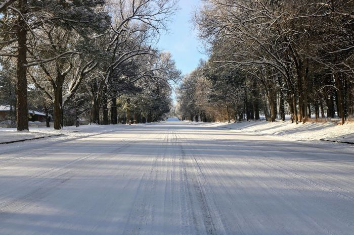 Snow road Snow Winter Cold Temperature The Way Forward Tree Tranquil Scene Nature Tranquility Road Outdoors Beauty In Nature No People Bare Tree Scenics Day Sky
