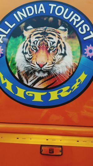 A Logo In A Tourist Bus