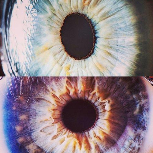 """""""occhi visti da molto vicino"""" Crazy Suren Manvelyan Photographer picture so close infinite"""