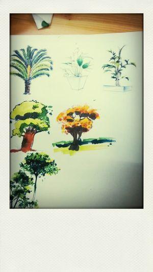第一次手绘植物 First Eyeem Photo