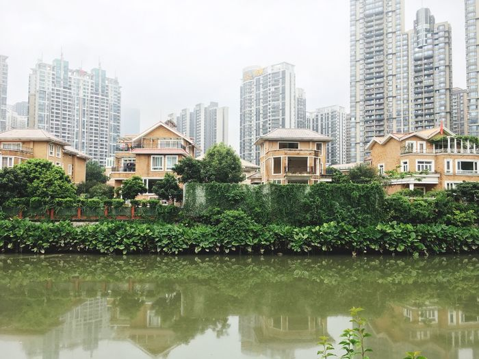 Architecture Building Exterior Reflection Water Built Structure Waterfront Tree City Skyscraper No People Growth Plant Green Color Outdoors Day Nature Sky Guangzhou,China Guangzhou China