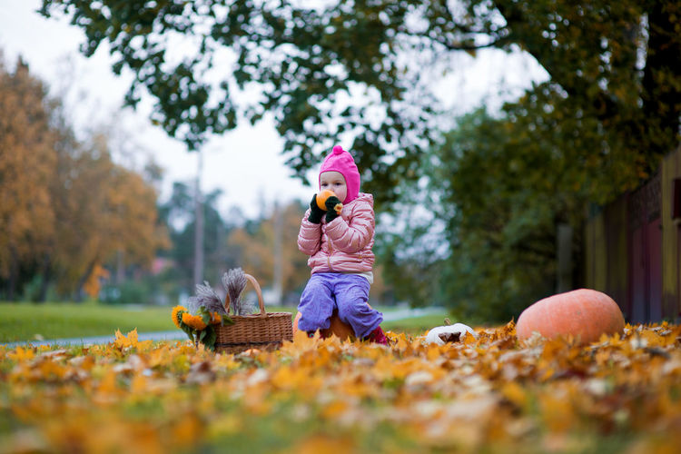 Girl smelling orange while sitting on pumpkin over autumn leaves against trees at public park