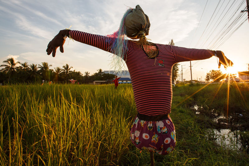 Arms Outstretched Arms Raised Beauty In Nature Childhood Day Field Full Length Girls Grass Growth Leisure Activity Lifestyles Nature One Person Outdoors People Real People Rear View Sky Standing Sunset