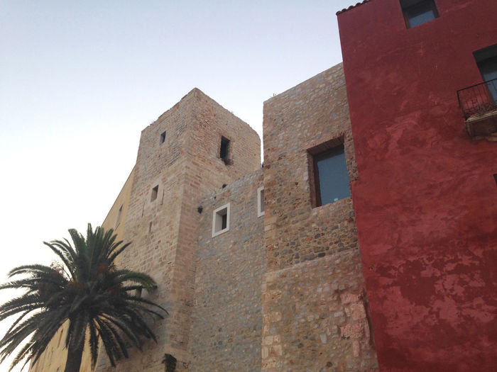 Altstadt Von Ibiza Architecture Clear Sky Dalt Vila Ibiza Low Angle View No People Outdoors Palm Tree SPAIN Summer Sunny Afternoon Tall - High