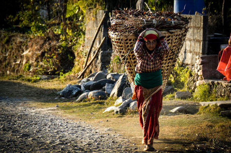 Pokhara, Nepal People Woman Carrying A Basket Hard Labor Travel Travel Photography Real People Lifestyles One Woman Only Social Issues Culture And Tradition People Photography Adult Only Women Outdoors People Of Nepal Front View Resist