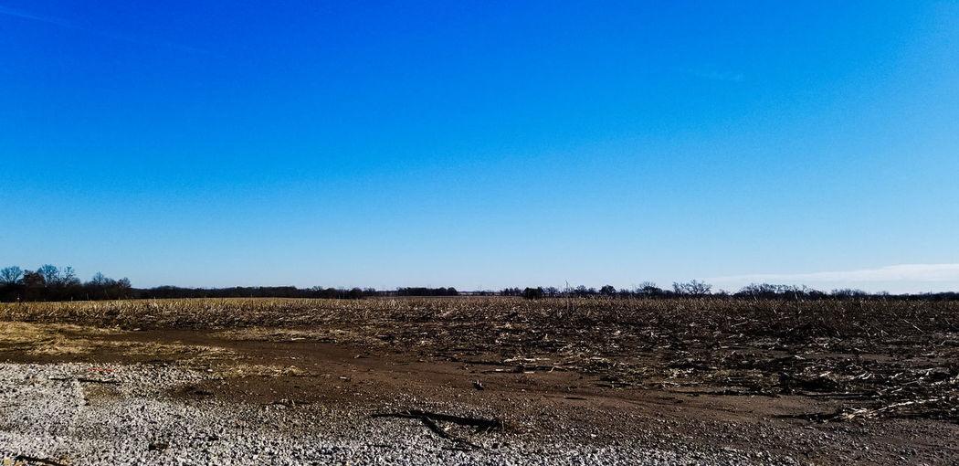 Clear Sky Agriculture Rural Scene Blue Sky