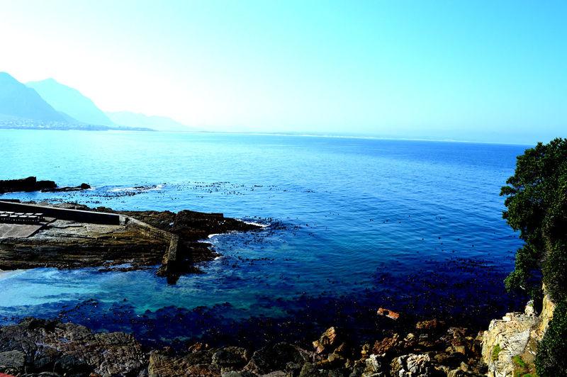 Trip to Hermanus, so stunning Blue Coastline Feel The Journey Mountain Range Ocean View Rock Formation Seaweed In Wa Sky