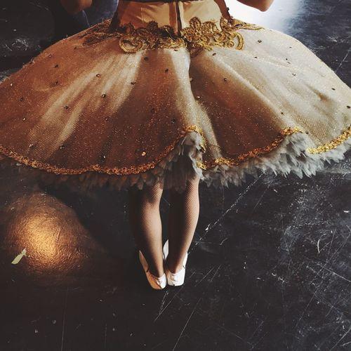 Low Section Of Ballet Dancer Standing On Floor