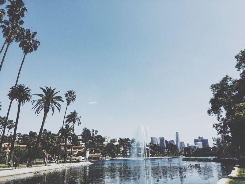 Wonderfully sunny Echo Park