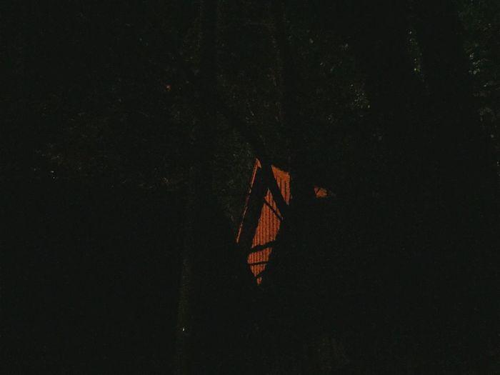 Dark Flag