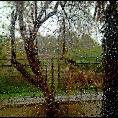 Drops Random Rain Greece Drops Nofilter Ubiquography Mytilini Instalovers_gr