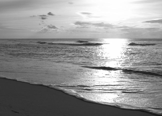 Northsea Coast, Rantum, Sylt Beautiful Copy Space Reflection Afternoon Sky Backgrounds Beach Beauty In Nature Black And White Clouds Horizon Over Water Monochrome Nature No People Northsea Outdoors Rantum Sand Sansibar Sylt Scenics Sea Sky Sun Tranquility Water Wave