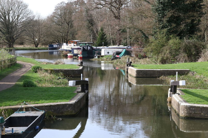 Boats Calm Canal Canal Boats Day Lock Nature No People Outdoors Reflection River Wey Scenics Surrey Countryside Towpath Tree Walking Walsham Lock Water